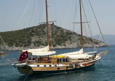 arif-kaptan-c-2